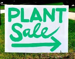plantsale3