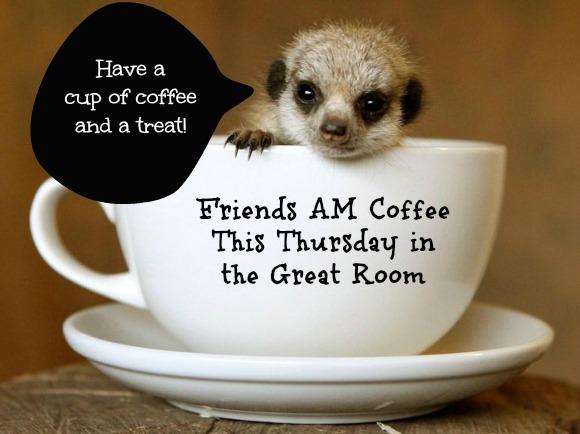 meerkat_coffee