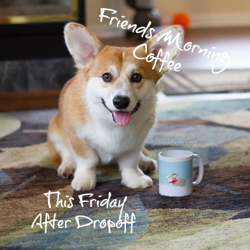 friends morning coffee this friday friends of southwest charter